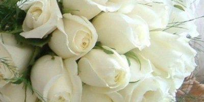 Поздравление с днем свадьбы племяннице от тети трогательные до слез
