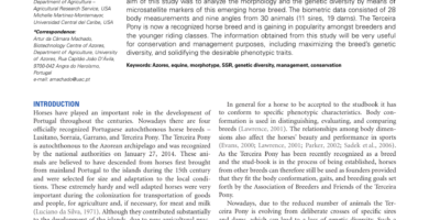 Article_62.htm
