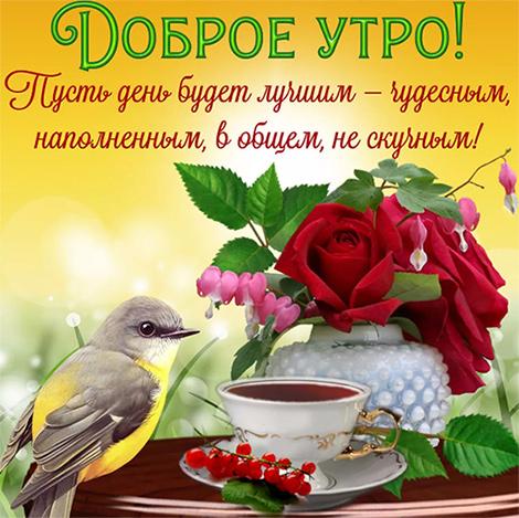 Доброе утро красивая проза для хорошего настроения